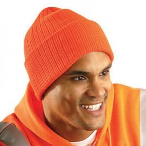 Thinsulate Insulated Hat