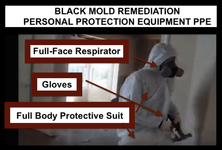 black mold remediation ppe