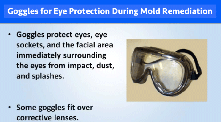 Goggles for Eye Protection During Mold Remediation