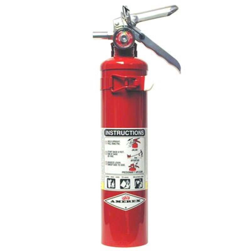 Amerex Dry Chemical Fire Extinguisher - 2.5 lbs