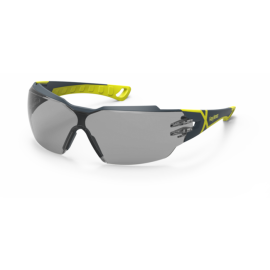 HexArmor MX300 Anti-Fog Scratch Resistant Safety Glasses TruShield™ Gray Lens Gray Color - 12 / Box