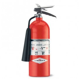 Amerex Carbon Dioxide Fire Extinguisher - 5 lbs
