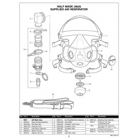 Allegro 9920-02 Head Harness Assembly